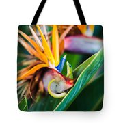 Bird Of Paradise Gecko Tote Bag