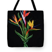 Bird Of Paradise In Black Tote Bag