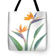 Bird Of Paradize Flowers Tote Bag