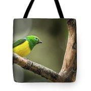 Bird Of Peru Tote Bag