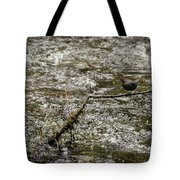 Bird On A River Tote Bag