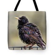 Bird On A Wire Tote Bag