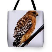 Bird On A Wire With Attitude Tote Bag