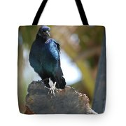 Bird On An Anchor Tote Bag