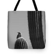 Bird On Cactus Tote Bag by Richard J Thompson