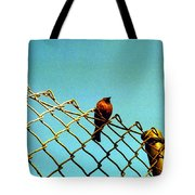 Bird On Fence Tote Bag