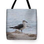 Bird On The Beach Tote Bag