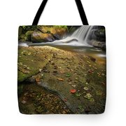 Bird Rock Falls Tote Bag