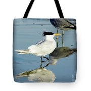 Bird - Tern - Reflection Tote Bag