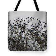 Bird Tree Tote Bag