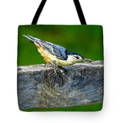 Bird With The Seed Tote Bag