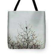 Bird005 Tote Bag