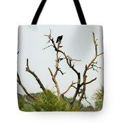 Bird011 Tote Bag