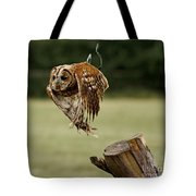 Birds 47 Tote Bag