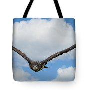 Birds 65 Tote Bag