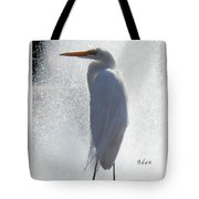 Birds And Fun At Butler Park Austin - Birds 2 Macro Tote Bag by Felipe Adan Lerma