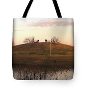 Birds And Fun At Butler Park Austin - Silhouettes 1 Detail Tote Bag