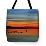 Birds At Dawn By The Buoy  Tote Bag