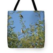 Birds At Peters Canyon Tote Bag
