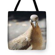 A Bird Views I Tote Bag
