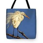 Birds - Great Egret Tote Bag