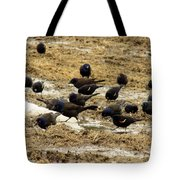 Birds In The Mud Tote Bag