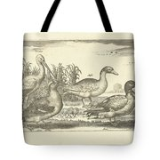 Birds In The Reeds, Adriaen Collaert, 1659 Tote Bag