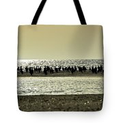 Sunset Birds  Tote Bag