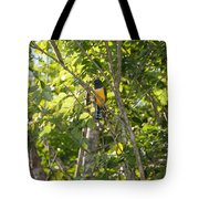 Birds Inside The Coba Ruins Tote Bag
