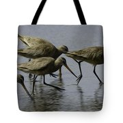 Birds Of A Feather 3 Tote Bag