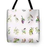 Birds Of Brazil Tote Bag