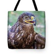 Birds Of Prey Series 3 Tote Bag