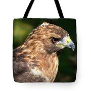 Birds Of Prey Series 5 Tote Bag
