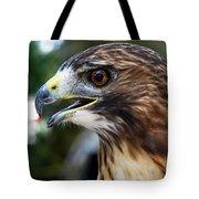 Birds Of Prey Series Tote Bag