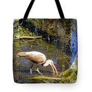 Birds Of The Everglades Tote Bag