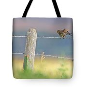 Birds On A Barbed Wire Fence Tote Bag