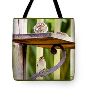 Birds On The Feeder Tote Bag