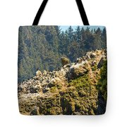 Birds On The Rocks Tote Bag