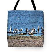 Birds Panorama Tote Bag