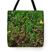 Birdsfoot Trefoil Surrounded By Tiny Bright Eyes In Campground In Saginaw-minnesota Tote Bag