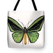 Birdwing Butterfly Tote Bag