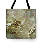 Birthday Greeting Card - White-throated Sparrow Songbird Tote Bag