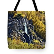 Bishop Creek Falls Tote Bag