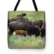 Bison And Lupine Tote Bag