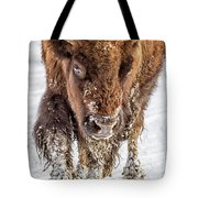Bison Approaching  8163 Tote Bag