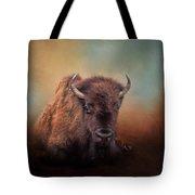 Bison At Rest Tote Bag