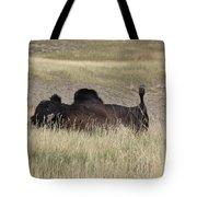 Bison Backscratching Tote Bag