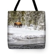 Bison Country  8101 Tote Bag