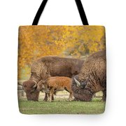 Bison Family Nation Tote Bag