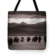 Bison Herd Into The Sunset - Bw Tote Bag